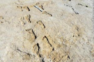 fossilized-footprints-humans